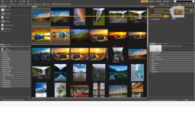 Adobe Bridge screenshoot 1